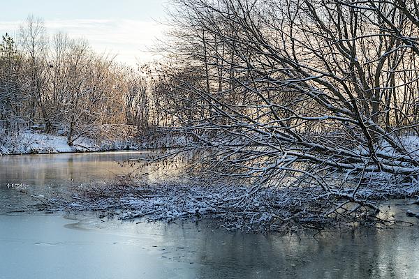 Georgia Mizuleva - Soft and Snowy - Winter Wonderland at a Frozen Pond