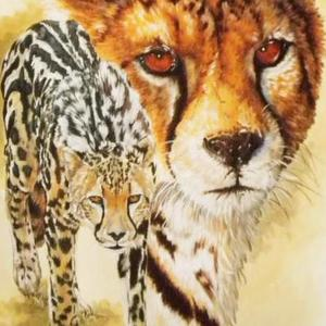 Beautiful and Wild Animals and Birds Art Competition