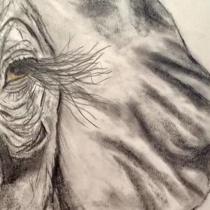 Pencil drawings of elephants Art Competition