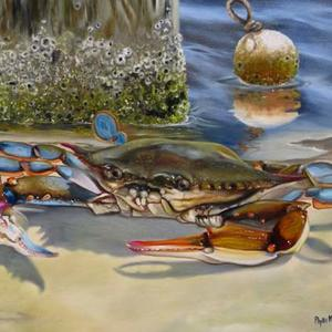 Shellfish Traditional Art Art Competition
